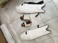 Woodworm cricket pads and gloves