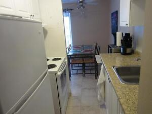 Ideal for London students! Secure bachelor apartment for rent London Ontario image 9