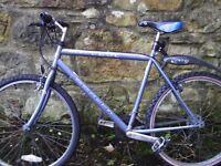 Apollo adult mountain bike