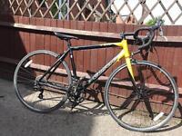 Carrera tdf road bike will post