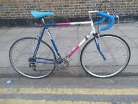 Dawes Reynolds 12 Speed racer/road bike