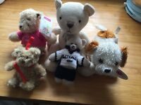 Five Lovely Teddy Bears From a Grown Up's Collection