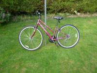 Ladies hybrid bike - Apollo CX10