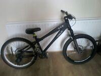 Fantastic Woodman D mountain bike