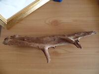 drift wood for fish tank