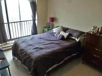 Peterborough 1 Bedroom Apartment for Rent: Time Square downtown