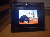 Toshiba Gigaframe Q81 Touch Screen HD Digital Picture Frame with Audio and Video!