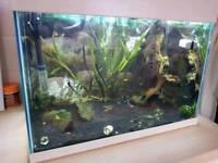2 foot aquarium 78 litre/17 gal