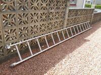 Youngman aluminium ladder