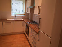 Newly renovated 2 bedroom Ground floor flat at West Pilton Gardens. Lots of pictures.