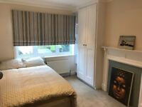 Large Double Room in Stunning House