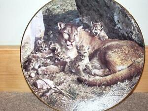 Collection Plate-Rocky Camp by Carl Brenders