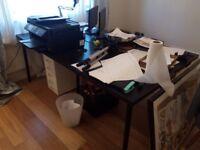 Linnmon/adils ikea 2metre desk