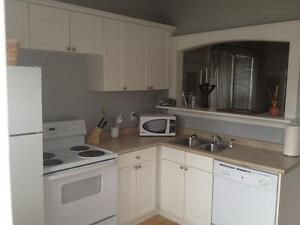 Amazing 1 bd FULLY FURNISHED with private yard Regina Regina Area image 4