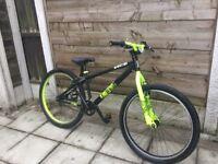 Bargain dirt jump bike