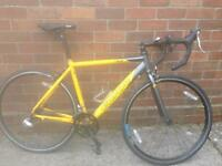 Carrera TDF road racing bike