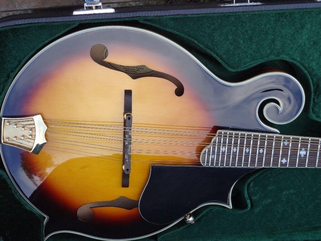 washburn m3swk all solid woods mandolin swap trade p/x   in Stirling    Gumtree