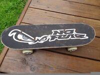 Mini No Fear Kids Skateboard