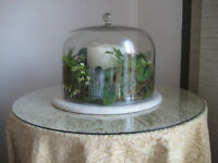 Glass Dome Feature