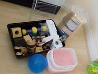 Used hamster cage and accessories.