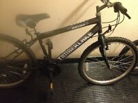 1 BMX and 1 girls mountain bike for sale - can sell seperately