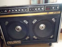 Carlsbro Stingray Lead Combo Amp