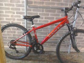 Dawes mountain bike