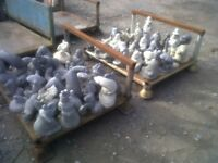 £80 for all these concrete ornaments