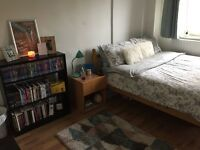 LARGE DOUBLE ROOM IN AMAZING LOCATION, LONDON