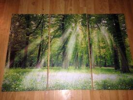 Beautiful Three Piece Canvas