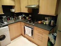 Double bedroom in the city centre for student