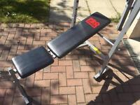 Weight bench and brand new preacher bench included
