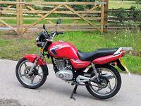Suzuki EN125. Red, low mileage.