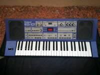Roland EG-101 keyboard