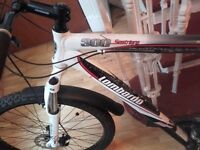 100 pound ONO Lombardo sestriere 300 mountain bike. 460 pound new on ebay 4 months old lock included