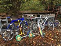 Job lot push Bike , racer , mountain bike , kids Bike