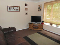 Large 2 bedroom flat available in Malinslee Telford