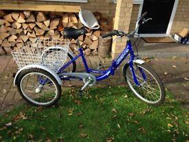 Viking trike for sale