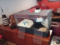 PET CAGE (LARGE)