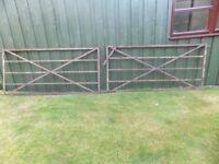 OLD METAL FIELD GATES