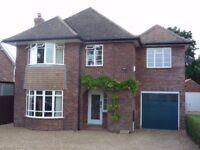 4 Bedroom family home in Wymondham