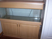 Fish Tank and Cabinet (4ft Tank) plus Exterior Filter
