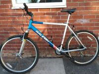 Raleigh Mountain Bike, fully serviced with front suspension, excellent condition.