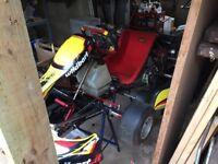 2010 WildKart Rotax Max 125cc