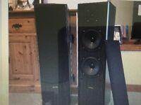 Floor standing stereo speakers