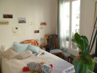Cosy renovated and furbished One bed roomed flat, ready to move in Paris
