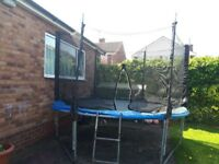 10ft trampoline, enclosure and ladder