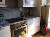 White Modern Kitchen with appliances