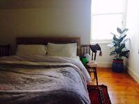 Festival Let - beautiful 2 bedroom flat in Marchmont