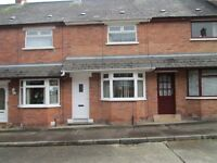 TO LET - EXCELLENT 2 BED MODERNISED TERRACE - 14 VARA DRIVE,BELFAST